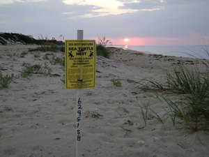 st george island property for sale